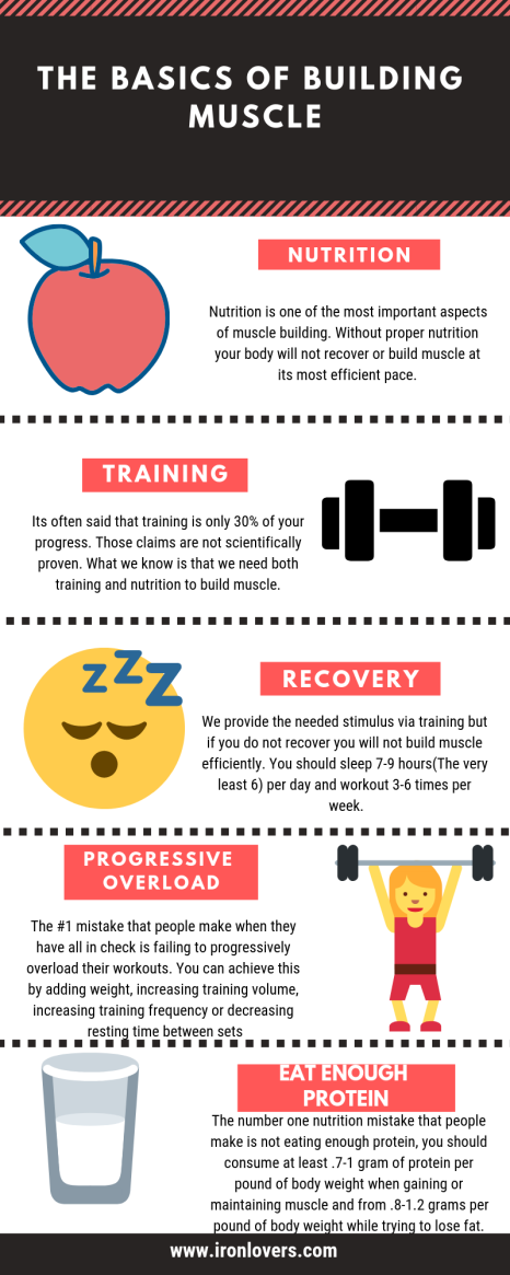 BUILD MUSCLE 101 (2)
